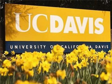 Mei xinyu and Ding dawei are Admitted to University of California, Davis!